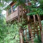 Ecrire dans les arbres au bord d'une rivière privée
